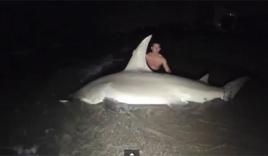 Đi câu cá, bắt được cá mập đầu búa khủng