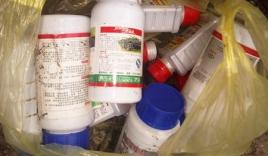 Sản xuất nấm ăn từ thuốc lạ