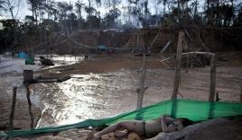 Cận cảnh cuộc sống trong bãi vàng khổng lồ hàng nghìn ha