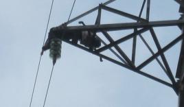 Đi chăn vịt phát hiện thi thể cháy đen trên cột điện cao thế