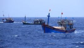 Xuất hiện máy bay chiến đấu, hàng chục tàu cá TQ ngăn cản tàu Việt Nam