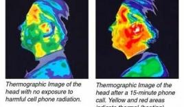 iPhone 6 khiến người dùng lo lắng bởi chỉ số bức xạ cao