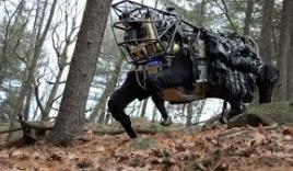 Những chiến binh robot đáng sợ nhất thế giới
