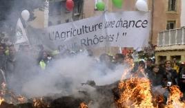 Nông dân Pháp mang hàng trăm tấn phân đi biểu tình