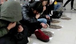 Sinh viên ăn vặt trong lớp bị giảng viên phạt cắn 50kg hạt hướng dương