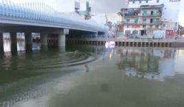 Video: Xôn xao thanh niên bơi hơn một tiếng trên kênh Nhiêu Lộc