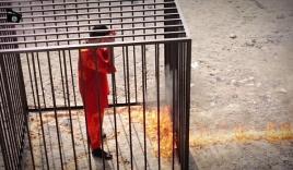 Xác nhận video phi công người Jordan bị IS thiêu sống