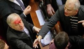 Nghị sĩ quốc hội Ukraine 'choảng nhau' như võ sĩ quyền Anh