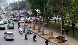 Ảnh: Hàng cây mới còi cọc vừa được trồng thay thế trên phố Hà Nội