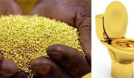 Có thể chắt lọc vàng, kim loại quý từ chất thải con người