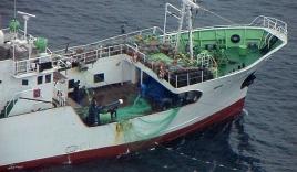 Tàu tuần tra Triều Tiên trôi vào biển Hàn Quốc