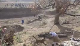 Video: Người đàn ông dùng gậy 'quyết chiến' với báo hoang