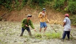 'Người rừng' Hồ Văn Lang cố gắng học chữ để... tìm vợ