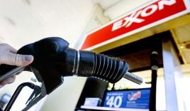 Giá dầu đang thấp nhất 6 năm qua