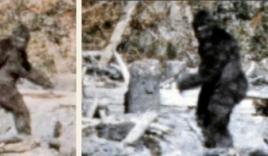 'Quái vật' truyền thuyết Bigfoot lại xuất hiện ở Mỹ?