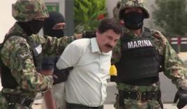 Tịch thu 11 máy bay của trùm ma túy nguy hiểm nhất thế giới
