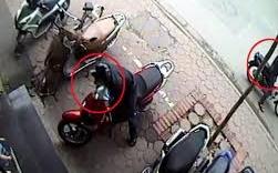 Bẻ khóa, trộm xe SH ngay cổng trường học