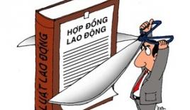 Thanh Hóa: Chấm dứt hợp đồng gần 100 giáo viên mầm non