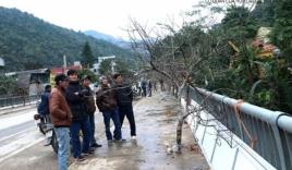Đào rừng giá 40 triệu từ miền Tây xứ Nghệ xuôi phố đón tết