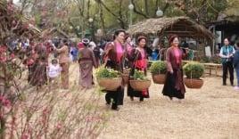 Hàng vạn người háo hức tham gia lễ hội hoa Xuân