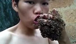 Thanh niên cho bàn tay bám đầy ong sống vào miệng