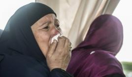 IS nhận là thủ phạm tấn công máy bay Ai Cập