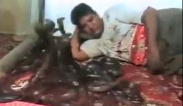 Thót tim người đàn ông nằm chơi vô tư với bầy rắn