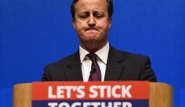 Thủ tướng Anh có nguy cơ mất chức nếu Anh rời EU