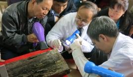 Tìm thấy mộ Trạng Trình Nguyễn Bỉnh Khiêm?