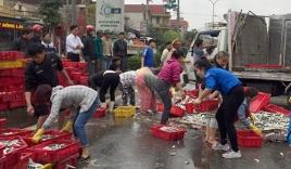 Xe tải gặp tai nạn, người dân giúp tài xế gom 2 tấn cá