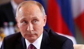 Tổng thống Putin: Triều Tiên thà ăn cỏ chứ không từ bỏ hạt nhân nếu không thấy an toàn