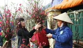 'Dị nhân đuổi mưa': Đừng chờ 30 Tết mới mua hoa