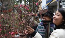 Hình ảnh không khí Tết rộn ràng khắp phố phường Hà Nội tràn ngập các trang báo Trung Quốc
