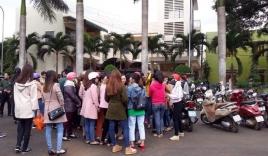 Vụ 500 giáo viên bị chấm dứt hợp đồng: Xem xét kỷ luật Chủ tịch huyện