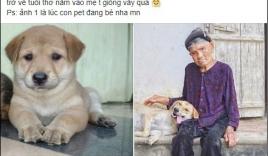 Cháu gái khoe ảnh ngoại thân thiết bên chú pet nhưng cộng đồng mạng chỉ cười ngất bởi dáng ngủ siêu lầy lội của chú chó cưng