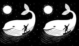 Bạn nhìn thấy cá voi hay người lướt sóng? Hình ảnh tiết lộ bạn có phải tuýp người đa nghi