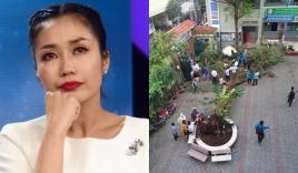 Mỹ nhân Trường Giang yêu thầm xót xa nói về vụ cây đổ đè học sinh