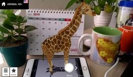 Làm thế nào để dùng ứng dụng Animal 4D trên điện thoại?
