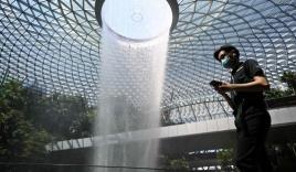 Singapore không điều trị Covid-19 miễn phí cho người nước ngoài