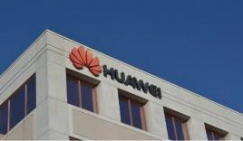 Bị Mỹ trừng phạt, Huawei từ nuôi lợn chuyển sang nuôi cá để nuôi nhân viên