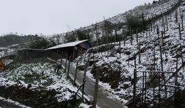Tuyết rơi diện rộng ở SaPa