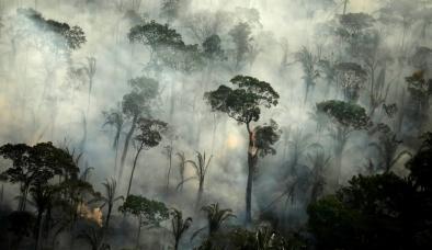 Thế giới đau đầu vì Covid-19, rừng Amazon tiếp tục bị hỏa thiêu