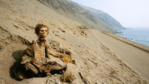 Bất ngờ phát hiện xác ướp 7000 năm tuổi trong tư thế ngồi