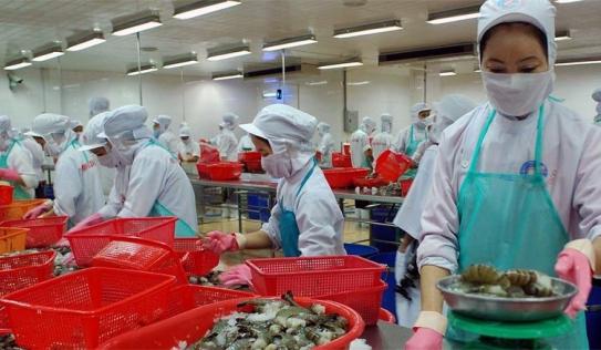 Đại gia thủy sản miền Tây: Người thu nghìn tỷ, kẻ lao tù