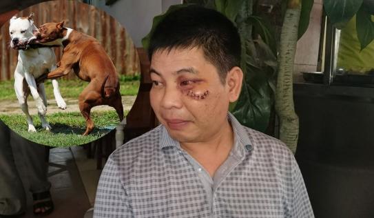 Can chó cắn nhau, bị hành hung nhập viện: 'Hai bố con họ lao vào đánh tôi'