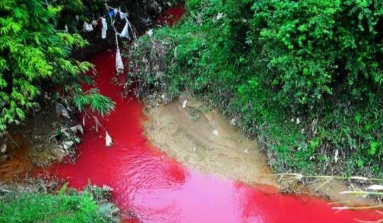 Kì lạ dòng suối máu đỏ bất thường ở Điện Biên