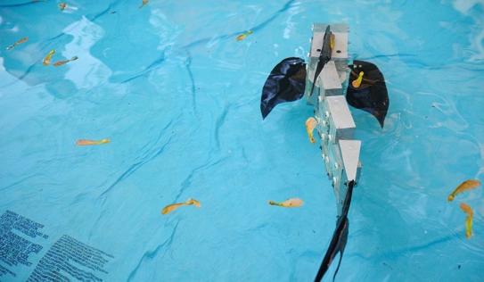 Video: Robot rắn nước xuất hiện ở Na Uy