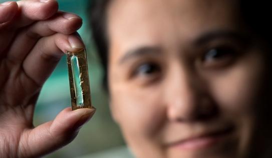 """Nữ nghiên cứu sinh gốc Việt phát minh ra pin """"bất tử"""""""