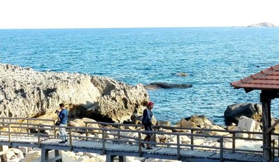 Du khách rơi xuống biển mất tích khi chụp hình ở Ninh Thuận