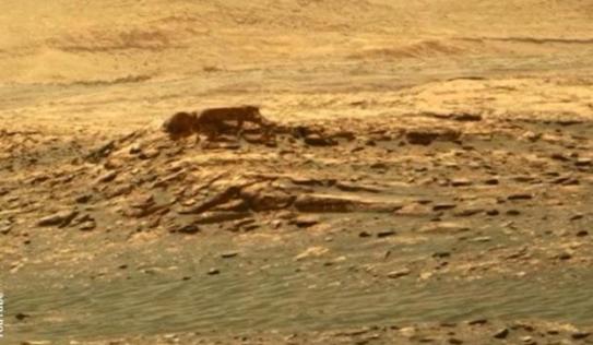 Video: Xác 'người ngoài hành tinh' trên Sao Hỏa khiến nhiều người giật mình
